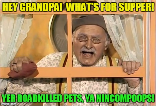 HEY GRANDPA!  WHAT'S FOR SUPPER! YER ROADKILLED PETS, YA NINCOMPOOPS! | made w/ Imgflip meme maker