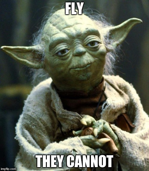 Star Wars Yoda Meme | FLY THEY CANNOT | image tagged in memes,star wars yoda | made w/ Imgflip meme maker