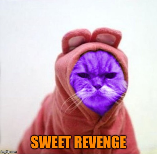 Sullen RayCat | SWEET REVENGE | image tagged in sullen raycat | made w/ Imgflip meme maker