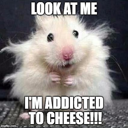 Stressed Mouse |  LOOK AT ME; I'M ADDICTED TO CHEESE!!! | image tagged in stressed mouse | made w/ Imgflip meme maker
