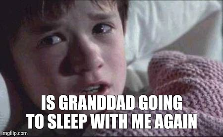 I See Dead People Meme | IS GRANDDAD GOING TO SLEEP WITH ME AGAIN | image tagged in memes,i see dead people | made w/ Imgflip meme maker