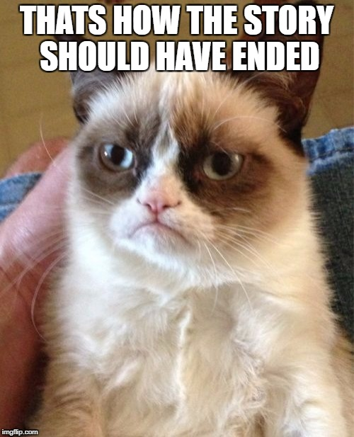 Grumpy Cat Meme | THATS HOW THE STORY SHOULD HAVE ENDED | image tagged in memes,grumpy cat | made w/ Imgflip meme maker