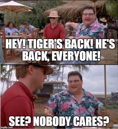 See Nobody Cares Meme | HEY! TIGER'S BACK! HE'S BACK, EVERYONE! SEE? NOBODY CARES? | image tagged in memes,see nobody cares | made w/ Imgflip meme maker