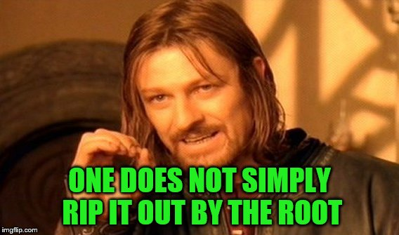 One Does Not Simply Meme | ONE DOES NOT SIMPLY RIP IT OUT BY THE ROOT | image tagged in memes,one does not simply | made w/ Imgflip meme maker