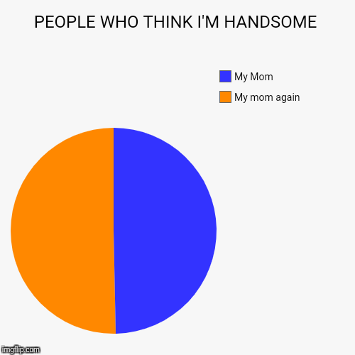 PEOPLE WHO THINK I'M HANDSOME | My mom again, My Mom | image tagged in funny,pie charts | made w/ Imgflip pie chart maker