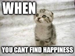 Sad Cat | WHEN YOU CANT FIND HAPPINESS | image tagged in memes,sad cat | made w/ Imgflip meme maker