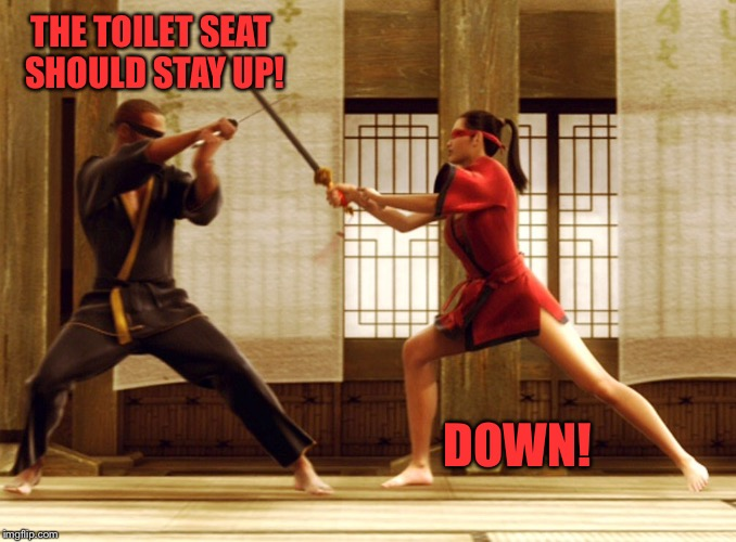 THE TOILET SEAT SHOULD STAY UP! DOWN! | made w/ Imgflip meme maker