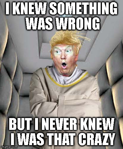 Straight Jacket Trump | I KNEW SOMETHING WAS WRONG BUT I NEVER KNEW I WAS THAT CRAZY | image tagged in straight jacket trump | made w/ Imgflip meme maker