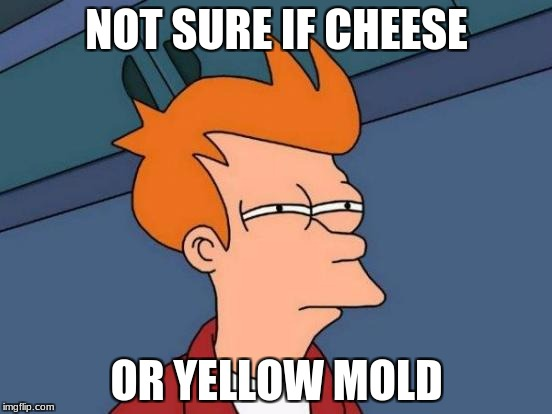 Futurama Fry Meme | NOT SURE IF CHEESE OR YELLOW MOLD | image tagged in memes,futurama fry | made w/ Imgflip meme maker