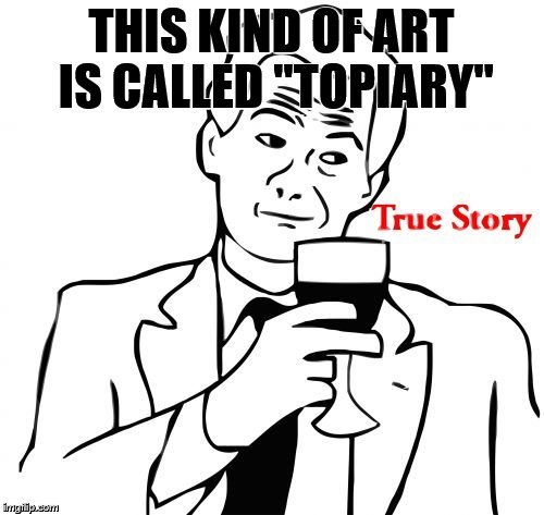 "THIS KIND OF ART IS CALLED ""TOPIARY"" 