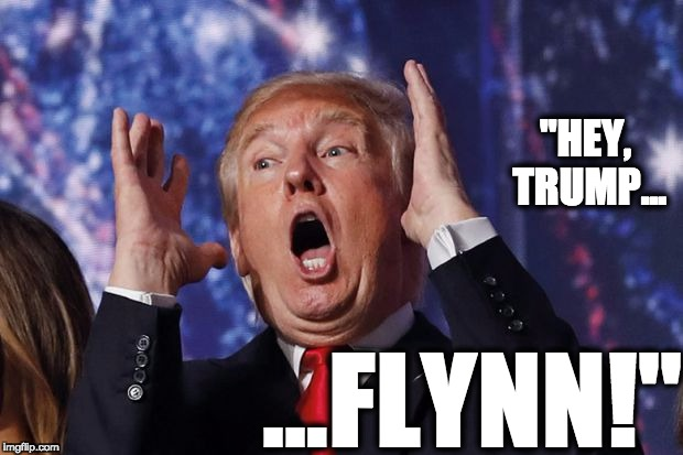 "Startled Trump | ""HEY, TRUMP... ...FLYNN!"" 