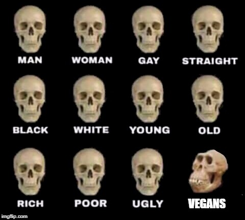 idiot skull | VEGANS | image tagged in idiot skull | made w/ Imgflip meme maker
