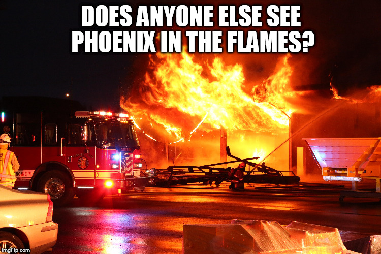 Phoenix spotted in Oregon | DOES ANYONE ELSE SEE PHOENIX IN THE FLAMES? | image tagged in phoenix fire | made w/ Imgflip meme maker