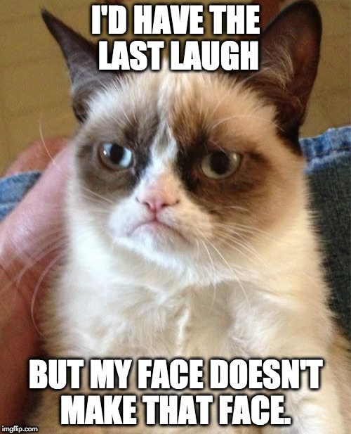 Grumpy Cat Meme | I'D HAVE THE LAST LAUGH BUT MY FACE DOESN'T MAKE THAT FACE. | image tagged in memes,grumpy cat | made w/ Imgflip meme maker