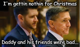 I'm gettin nothin for Christmas Daddy and his friends were bad... | image tagged in flynn,mueller,treason | made w/ Imgflip meme maker