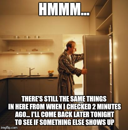 Fridge | HMMM... THERE'S STILL THE SAME THINGS IN HERE FROM WHEN I CHECKED 2 MINUTES AGO... I'LL COME BACK LATER TONIGHT TO SEE IF SOMETHING ELSE SHO | image tagged in fridge | made w/ Imgflip meme maker