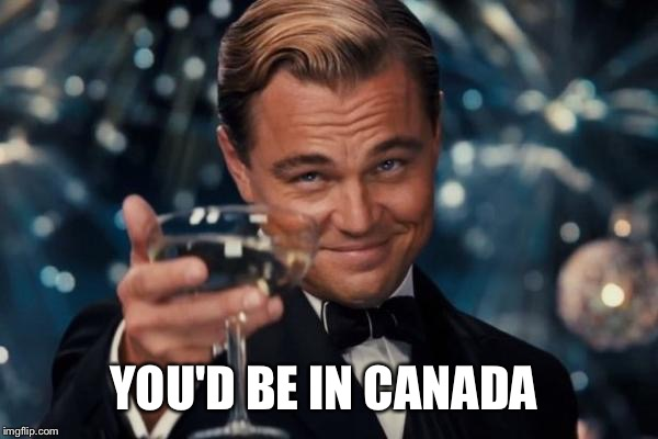 Leonardo Dicaprio Cheers Meme | YOU'D BE IN CANADA | image tagged in memes,leonardo dicaprio cheers | made w/ Imgflip meme maker
