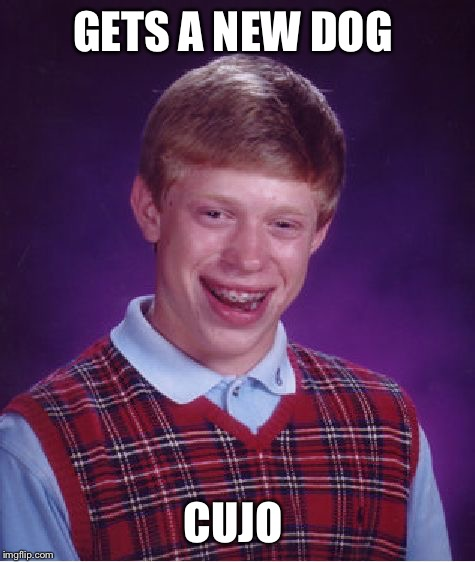 Bad Luck Brian Meme | GETS A NEW DOG CUJO | image tagged in memes,bad luck brian | made w/ Imgflip meme maker