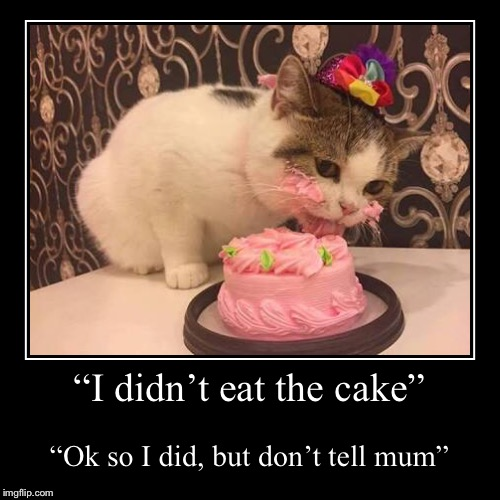 """I didn't eat the cake"" 