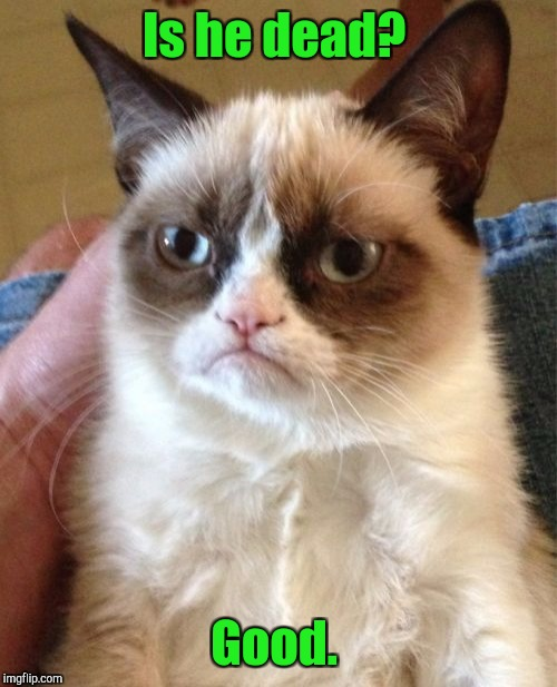 Grumpy Cat Meme | Is he dead? Good. | image tagged in memes,grumpy cat | made w/ Imgflip meme maker