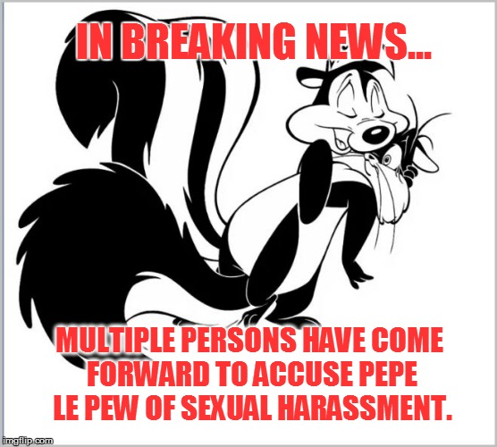 Skunkual harassment | IN BREAKING NEWS... MULTIPLE PERSONS HAVE COME FORWARD TO ACCUSE PEPE LE PEW OF SEXUAL HARASSMENT. | image tagged in skunk | made w/ Imgflip meme maker