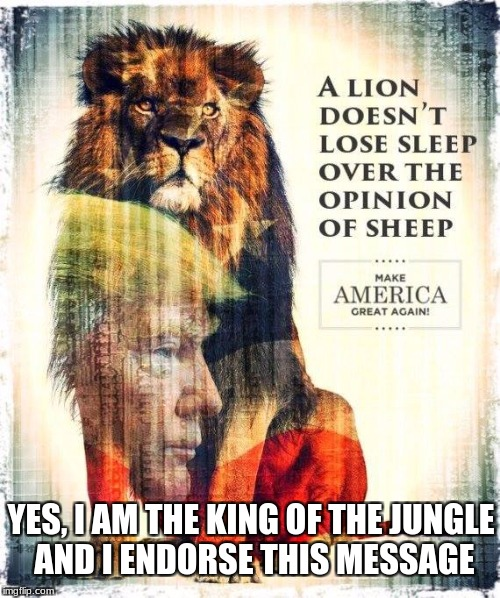 King of the Jungle | YES, I AM THE KING OF THE JUNGLE AND I ENDORSE THIS MESSAGE | image tagged in trump,kingofthejungle,sheep | made w/ Imgflip meme maker