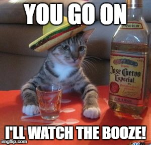 YOU GO ON I'LL WATCH THE BOOZE! | made w/ Imgflip meme maker