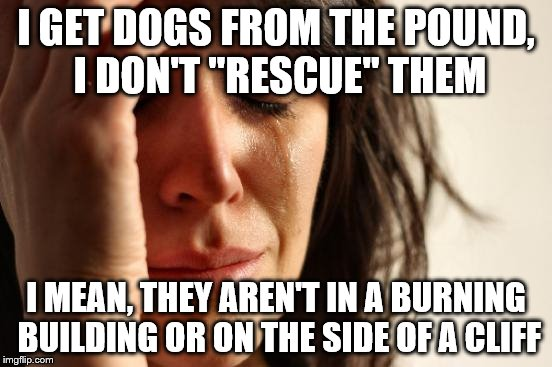 "First World Problems Meme | I GET DOGS FROM THE POUND, I DON'T ""RESCUE"" THEM I MEAN, THEY AREN'T IN A BURNING BUILDING OR ON THE SIDE OF A CLIFF 