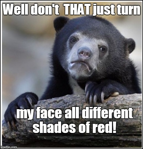 Well don't  THAT just turn my face all different shades of red! | made w/ Imgflip meme maker