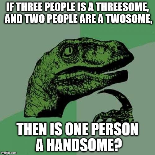 Handsome | IF THREE PEOPLE IS A THREESOME, AND TWO PEOPLE ARE A TWOSOME, THEN IS ONE PERSON A HANDSOME? | image tagged in memes,philosoraptor,funny | made w/ Imgflip meme maker
