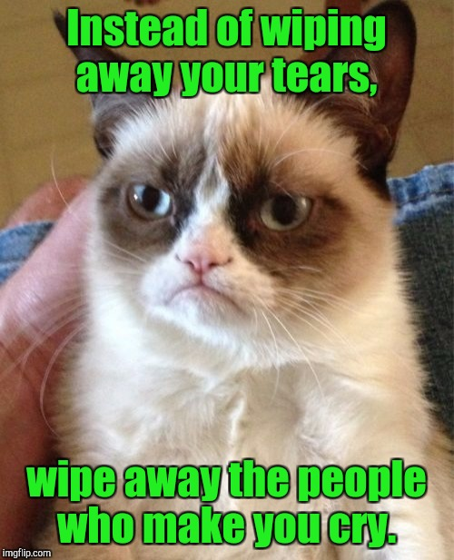 Grumpy Cat Meme | Instead of wiping away your tears, wipe away the people who make you cry. | image tagged in memes,grumpy cat | made w/ Imgflip meme maker