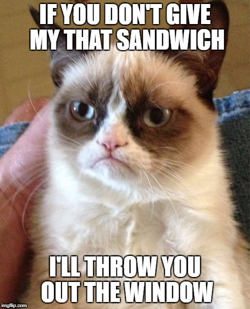Grumpy Cat Meme | IF YOU DON'T GIVE MY THAT SANDWICH I'LL THROW YOU OUT THE WINDOW | image tagged in memes,grumpy cat | made w/ Imgflip meme maker