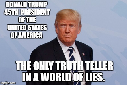 DONALD TRUMP 45TH  PRESIDENT OF THE UNITED STATES OF AMERICA THE ONLY TRUTH TELLER IN A WORLD OF LIES. | image tagged in donald trump | made w/ Imgflip meme maker