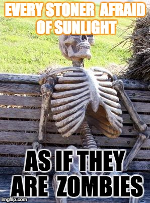 Waiting Skeleton Meme | EVERY STONER  AFRAID OF SUNLIGHT AS IF THEY ARE  ZOMBIES | image tagged in memes,waiting skeleton | made w/ Imgflip meme maker