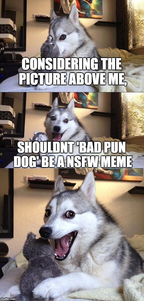 Bad Pun Dog Meme | CONSIDERING THE PICTURE ABOVE ME, SHOULDNT 'BAD PUN DOG' BE A NSFW MEME | image tagged in memes,bad pun dog,nsfw,question,tits,booty | made w/ Imgflip meme maker