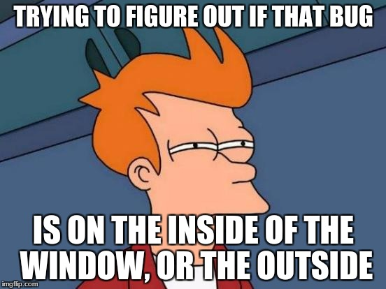 Futurama Fry Meme | TRYING TO FIGURE OUT IF THAT BUG IS ON THE INSIDE OF THE WINDOW, OR THE OUTSIDE | image tagged in memes,futurama fry | made w/ Imgflip meme maker