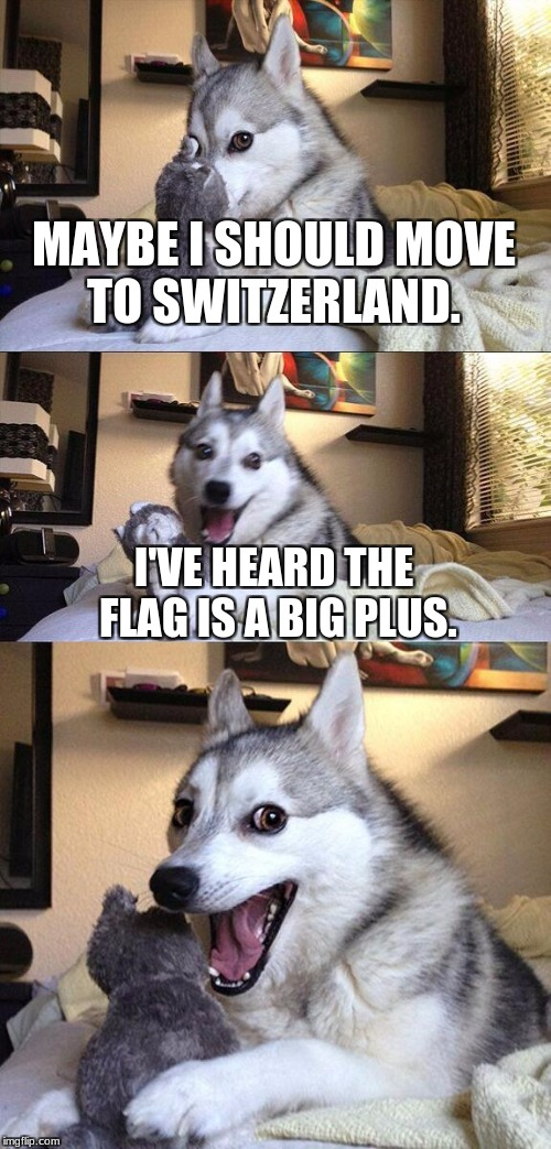 Bad Pun Dog Meme | MAYBE I SHOULD MOVE TO SWITZERLAND. I'VE HEARD THE FLAG IS A BIG PLUS. | image tagged in memes,bad pun dog | made w/ Imgflip meme maker