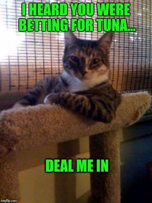 The Most Interesting Cat In The World Meme | I HEARD YOU WERE BETTING FOR TUNA... DEAL ME IN | image tagged in memes,the most interesting cat in the world | made w/ Imgflip meme maker