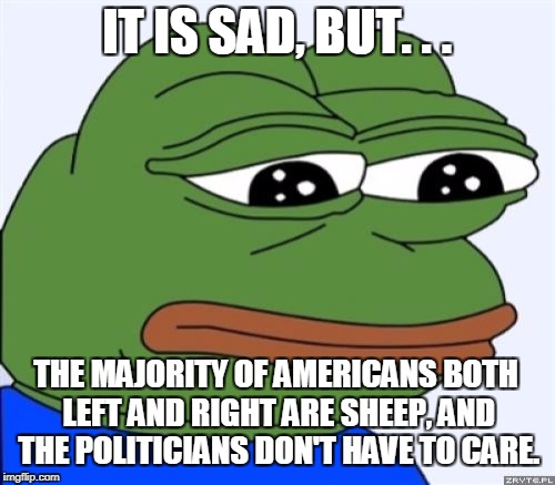 IT IS SAD, BUT. . . THE MAJORITY OF AMERICANS BOTH LEFT AND RIGHT ARE SHEEP, AND THE POLITICIANS DON'T HAVE TO CARE. | made w/ Imgflip meme maker