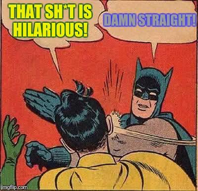 Batman Slapping Robin Meme | THAT SH*T IS HILARIOUS! DAMN STRAIGHT! | image tagged in memes,batman slapping robin | made w/ Imgflip meme maker