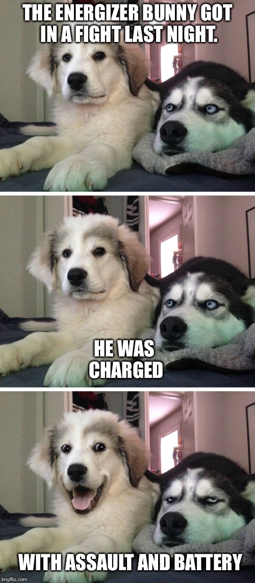 He kept punching and punching... | THE ENERGIZER BUNNY GOT IN A FIGHT LAST NIGHT. HE WAS CHARGED WITH ASSAULT AND BATTERY | image tagged in bad pun dogs,energizer bunny,memes,funny memes | made w/ Imgflip meme maker