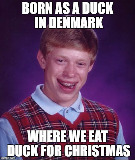 Bad Luck Brian Meme | BORN AS A DUCK IN DENMARK WHERE WE EAT DUCK FOR CHRISTMAS | image tagged in memes,bad luck brian | made w/ Imgflip meme maker