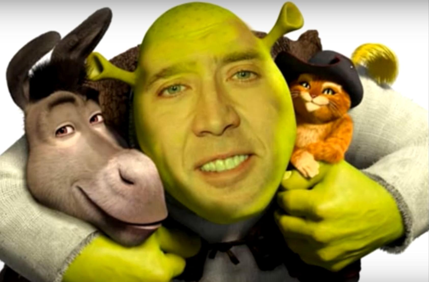 Shrek Gif Cat