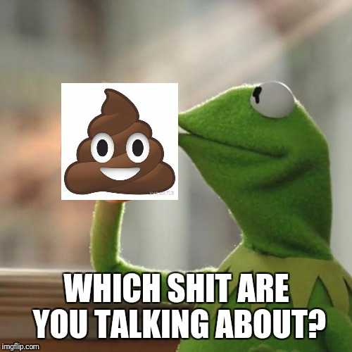 But Thats None Of My Business Meme | WHICH SHIT ARE YOU TALKING ABOUT? | image tagged in memes,but thats none of my business,kermit the frog | made w/ Imgflip meme maker