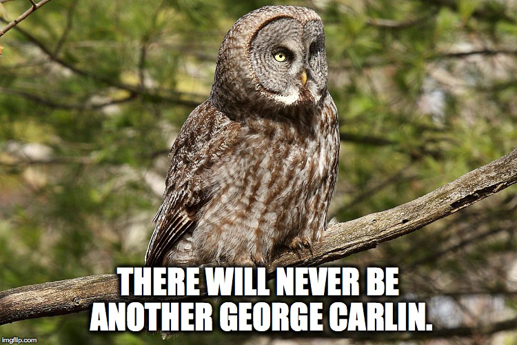 THERE WILL NEVER BE ANOTHER GEORGE CARLIN. | made w/ Imgflip meme maker