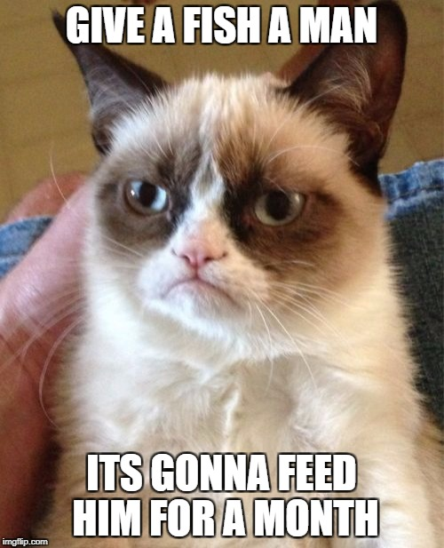 Grumpy Cat Meme | GIVE A FISH A MAN ITS GONNA FEED HIM FOR A MONTH | image tagged in memes,grumpy cat | made w/ Imgflip meme maker