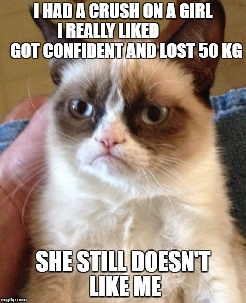 Grumpy Cat Meme | I HAD A CRUSH ON A GIRL I REALLY LIKED            GOT CONFIDENT AND LOST 50 KG SHE STILL DOESN'T LIKE ME | image tagged in memes,grumpy cat | made w/ Imgflip meme maker