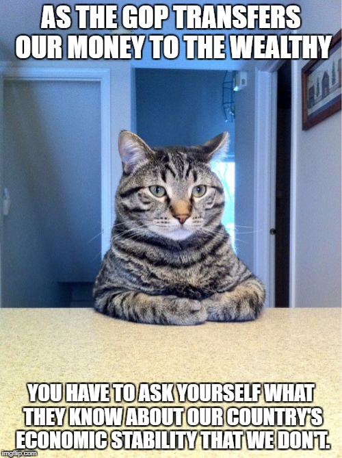Take A Seat Cat Meme | AS THE GOP TRANSFERS OUR MONEY TO THE WEALTHY YOU HAVE TO ASK YOURSELF WHAT THEY KNOW ABOUT OUR COUNTRY'S ECONOMIC STABILITY THAT WE DON'T. | image tagged in memes,take a seat cat,tax cuts,economics,gop,rich | made w/ Imgflip meme maker