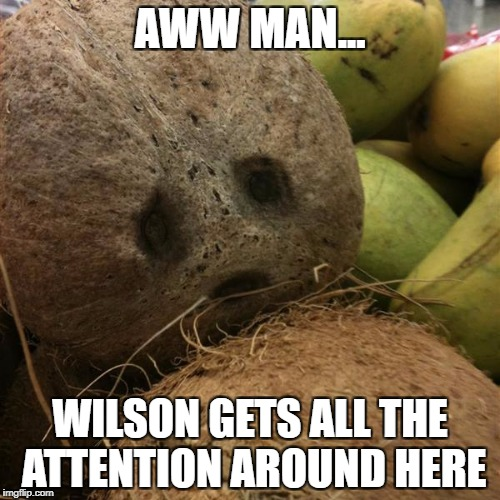 that tattoo of his | AWW MAN... WILSON GETS ALL THE ATTENTION AROUND HERE | image tagged in tropical depression,sad,tom hanks,wilson | made w/ Imgflip meme maker