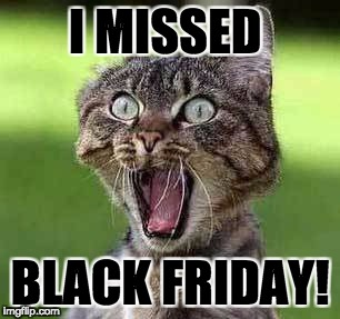 I missed  black friday | I MISSED BLACK FRIDAY! | image tagged in cats,funny cats,black friday,shocked face | made w/ Imgflip meme maker